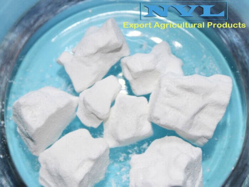 Powder arrowroot (T4)