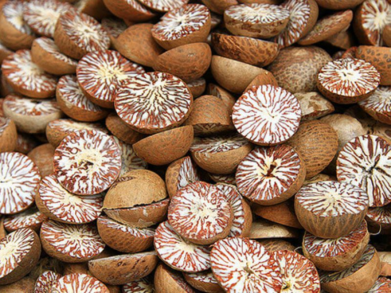 Dried betel nut (half cut)
